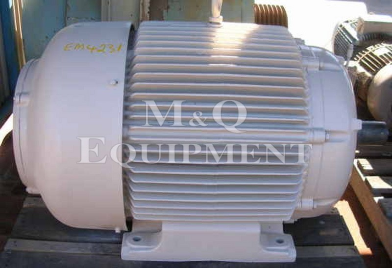 110 KW / NEUMAN / Electric Motor